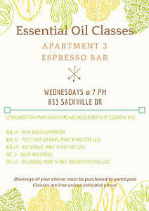 doTERRA cleaning make and take class, using your essential oils