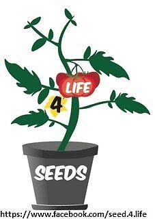 Brucy'z Seeds-4-Life