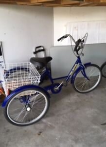 """Like New """"Grocery"""" Tricycle!!"""