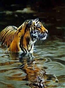 Custom framed tiger painting 'chilling out'