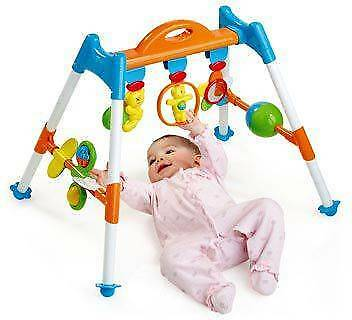 Bruin Baby's First Playgym