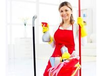 Cleaner Wanted / Required In Newmarket, Suffolk