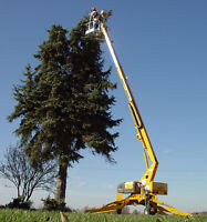Lift rental truss and tree service