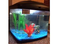 BRAND NEW - INTERPET GLASS FISH TANK