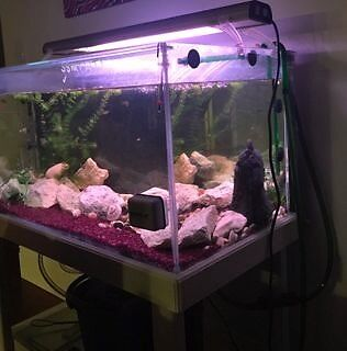 Various Fish Tanks and Accessories - see prices in ad East Victoria Park Victoria Park Area Preview