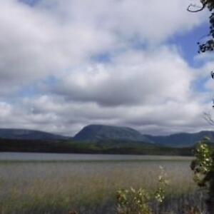 2.33 Acres of waterfront property available in Norris Point, NL