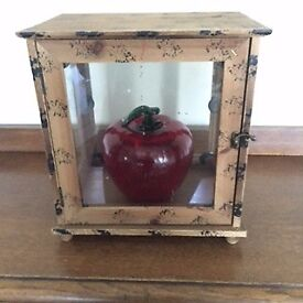 Glass and wooden case for ornament.