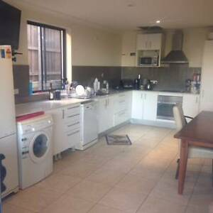 A. MASSIVE ROOM - COUPLES AND SHORT TERM WELCOME - GREAT LOCATION Coorparoo Brisbane South East Preview