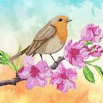Crystal Card kit diamond painting Robin 18 x 18 cm