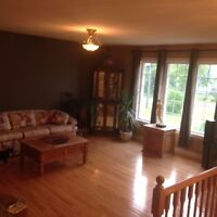RAISED BUNGALOW - Clearview      OPEN HOUSE Aug 2    1-3pm