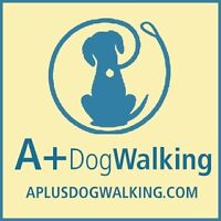 Dog walker position available (Hamilton, Ancaster, and Dundas)