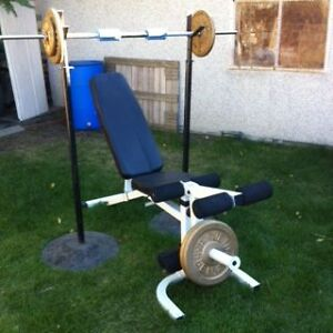 QUALITY WEIGHT BENCH & IRON WEIGHT SET