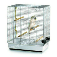 Conure/Parakeet/Cockatiel cages, toys and perches