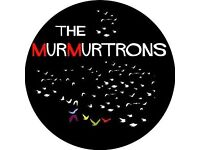 Guitarist wanted for The Murmurtrons , 40s indie band. See sound cloud for demos, gig awaiting...