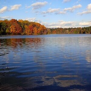 """117"""" water frontage on beautiful Shadow Lake"""