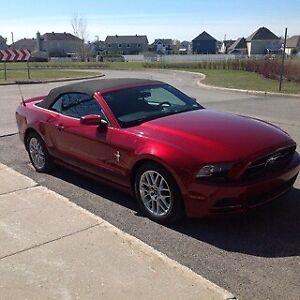 Mustang 2014, 15 700km