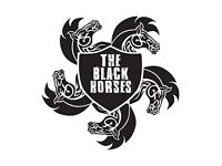 Auditions for The Black Horses (Vocals, Guitar and Bass wanted)