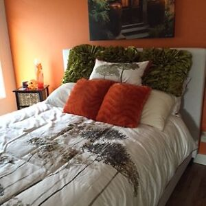 Executive 1 bedroom shared accommodation with owner for rent