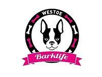 Westoe Barklife