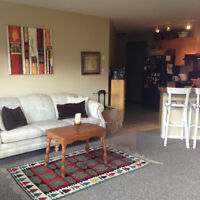 June and July Sublet
