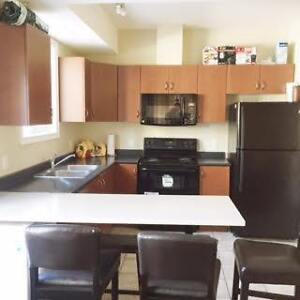 334 KING - 1/5 ROOMS IN ALL-FEMALE SUITE (WINTER 2017 SUBLET) Kitchener / Waterloo Kitchener Area image 5