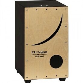 Roland EC10 electronic cajon. Versatile instrument with a variety of percussion sounds!