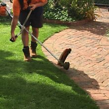 D&Q's complete gardening-mowing service Glen Osmond Burnside Area Preview