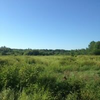 VACANT LAND - 80 ACRES