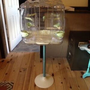 Male Budgie with 2 Cages & all accessories Kawartha Lakes Peterborough Area image 7