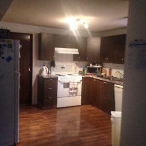 Spacious Westend Basement Suite with Yard