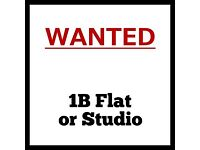 WANTED - Flat or Studio