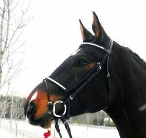 SHERWOOD DRESSAGE BRIDLE WITH BLING BROW & NOSEBAND OVERSIZE