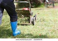 GRASS CUTTER AT YOUR SERVICE FOR CHEAP.