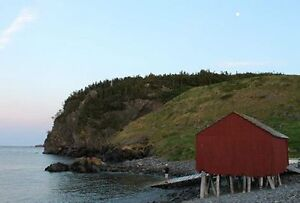 House for sale or rent  in Dunfield,Trinity Bay,Nl St. John's Newfoundland image 10