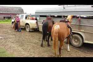 Livestock trailer for sale $4,500