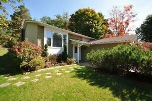 Dazzling Raised Bungalow On 100 Foot Lot!