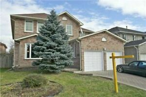 specious 2bedroom basement apartment for rent in Richmondhill