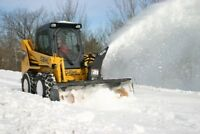 Snow Removal, Demo and Site Clean Up