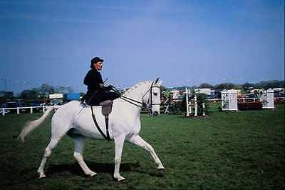 Ride Print Jersey - 741079 Riding Side Saddle Jersey A4 Photo Print