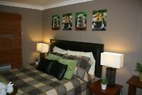 Beautifully Decorated Bachelor suite in Gregoire avail Sept 1st!