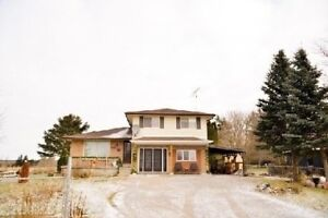 Excellent Property & Location In North Pickering! Spacious Lot C