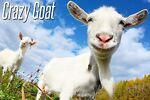 Crazy Goats Fire Sales