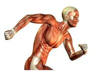 Sport Massage Deep Tissue - Injuries /pain treatment - relaxation-King's Cross Station