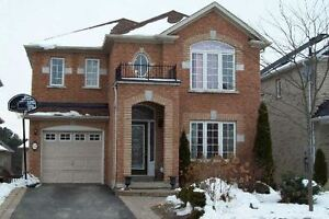 NEWMARKET 1 BEDROOM, BRIGHT WALKOUT BASEMENT FOR RENT/LEASE