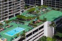 Condos for Rent in Waikiki