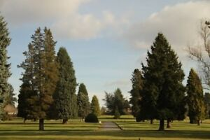 OCEANVIEW CEMETERY - Side-by-side in Empire - Save 50%