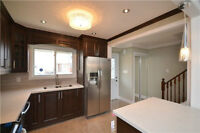 Beautifully Renovated 3 Bedroom house on SALE at Torbram/William