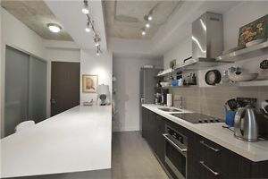 Luxury Condo at king and bathurst
