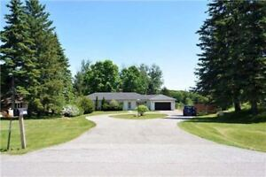 Bungalow house is located in King City