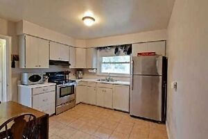 Main Floor Of A 3 Bedroom Bungalow in Central Newmarket London Ontario image 2